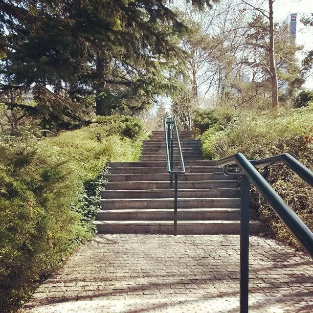 les fameux escaliers